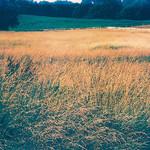 Land - Foto Flickr kevin dooley